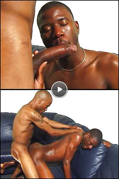 gay ebony males video